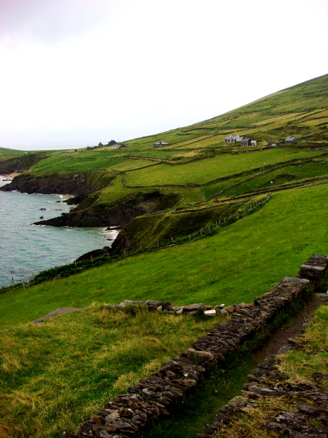 Views Along the Ring of Dingle